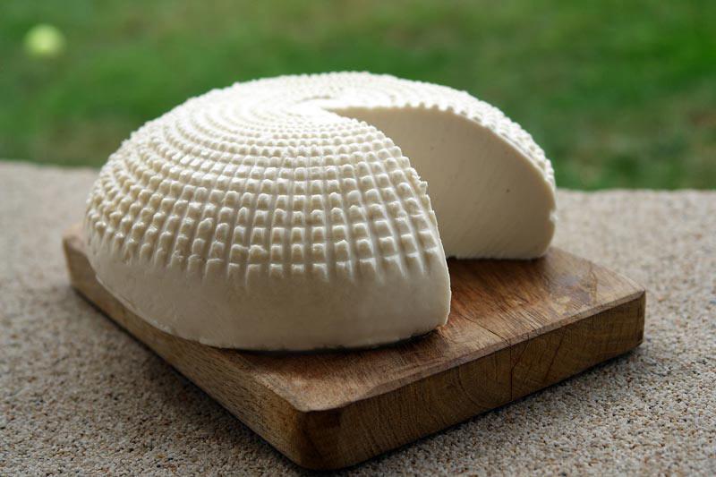 Fotografia di ricotta o formaggio primo sale toscano