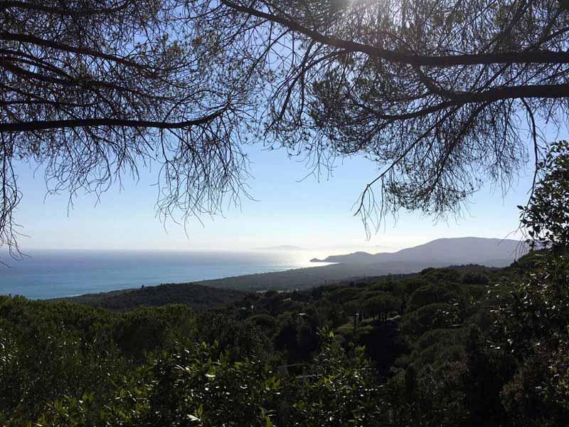 Foto con vista dall'alto dei dintorni di Castiglione della Pescaia